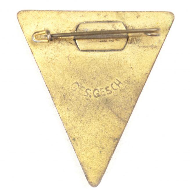 Nat. Soz. Frauenschaft (large size) badge