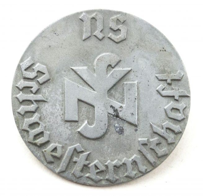 NS Schwesternschaft brooch + photo in wear