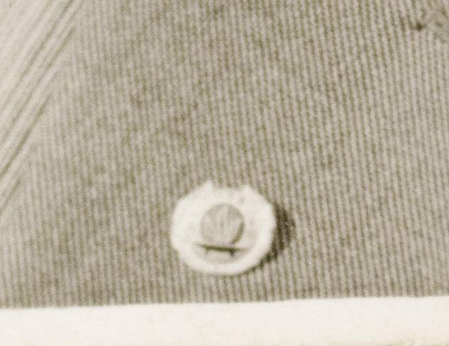 Reichsbund der Kriegsbeschädigten und Kriegsteilnehmer badge + photo in wear