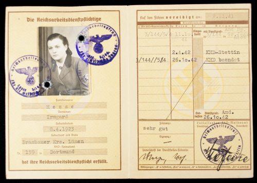 (RAD) Reichsarbeitsdienst für die Weibliche Jugend - Reichsarbeitsdienstpass with passphoto