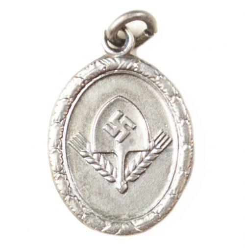 Reichsarbeitsdienst (RAD) Dienstauszeichnung für Männer in silver miniature medal