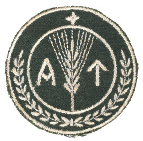 (Norway) Arbeidstjensten (AT) Armbadge for Men of the Norwegian Labour Service