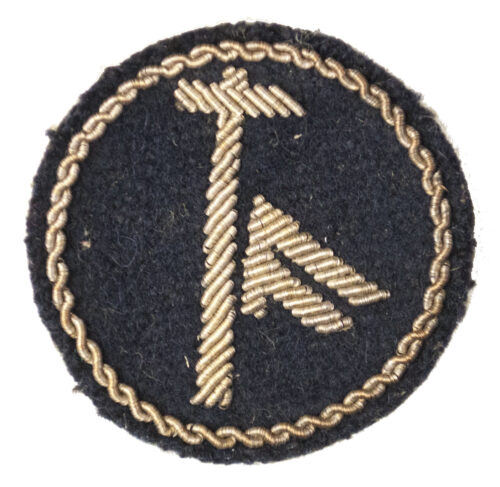 (Norway) specialist cloth badge with rune