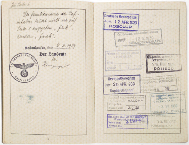 Reissepass with passphoto and documents